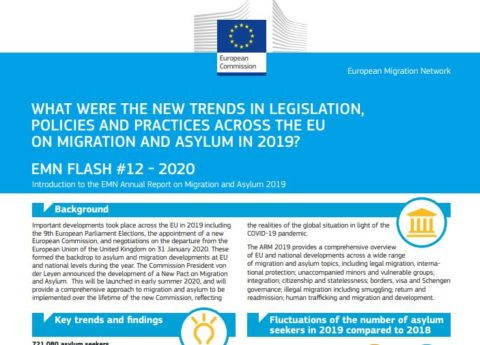 Annual Report on Migration and Asylum 2019 (Flash)