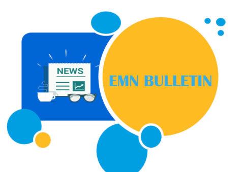 33. EMN Bulletin just published