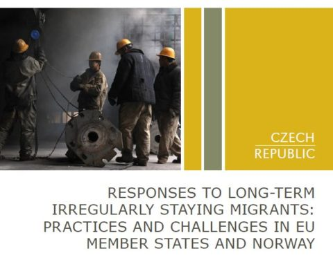 Responses to long-term irregularly staying migrants: practices and challenges in EU Member States and Norway (národní zpráva)