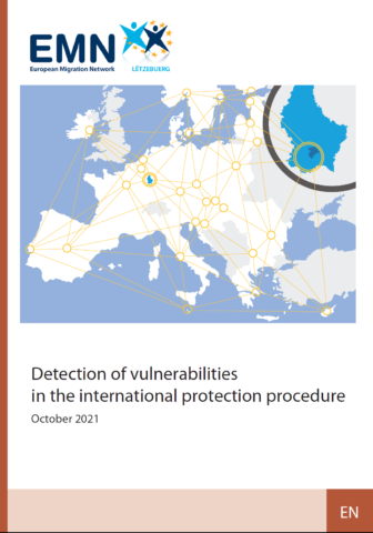 Detection of vulnerabilities in the international protection procedure
